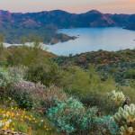 barlette lake